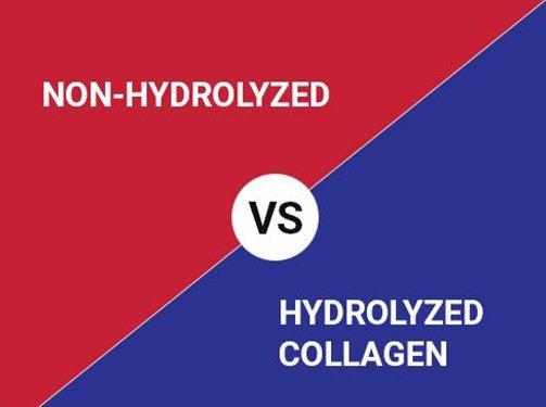 Non Hydrolyzed / Hydolyzed Collagen