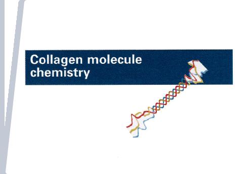 COLLAGEN MOLECULE CHEMISTRY