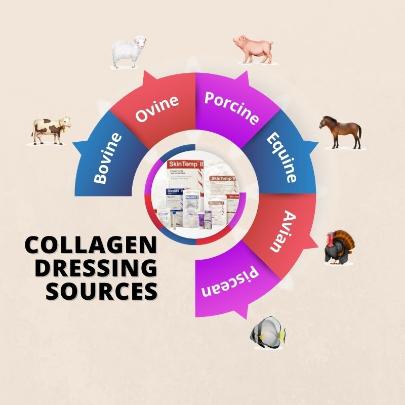 Different Types of Collagen Dressing Technologies and How They Work